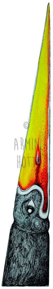 Armin Hott - Up